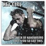 NaNoWriMo: Week 4