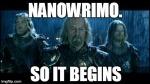 NaNoWriMo: Week One